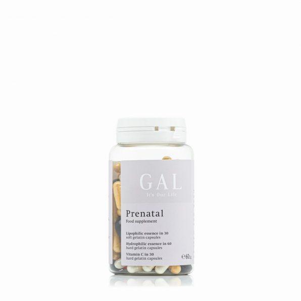 GAL Prenatal Multivitamin